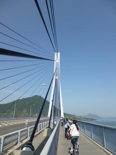 自転車道.JPG